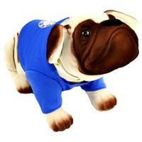 Chelsea - Nodding Dog