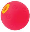 MCP - Large Activity Dog Treat Ball
