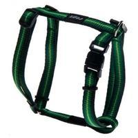 Rogz - Pavement Special Small 11m Midget Dog H-Harness (Green Design)