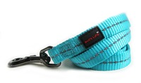 Dog's Life - Reflective Supersoft Webbing Leash - Turquoise (Small) - Cover