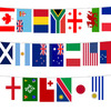 Rugby World Cup - 6M Polyester Bunting (20 Flags)