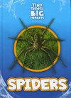 Spiders - John Wood (Hardcover)