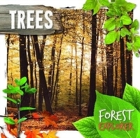 Trees - Robin Twiddy (Hardcover) - Cover