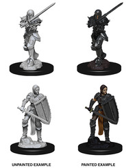 Dungeons & Dragons - Nolzur's Marvelous Unpainted Miniatures - Female Human Fighter (Miniatures) - Cover