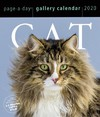 Cat Pageaday Gallery Calendar 2020