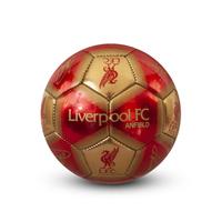 Liverpool - Signature Mini Football (Size 1) - Cover