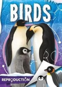 Birds - Emilie Dufresne (Hardcover) - Cover