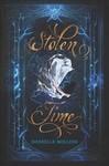 Stolen Time - Danielle Rollins (Paperback)