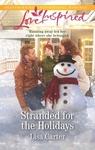 Stranded For The Holidays - Lisa Carter (Paperback)