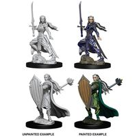 Dungeons & Dragons - Nolzur's Marvelous Unpainted Miniatures - Female Elf Paladin (Miniatures) - Cover