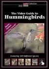 Video Guide to Hummingbirds (Region 1 DVD)