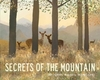 Secrets of the Mountain - Libby Walden (Paperback)