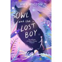 Owl and the Lost Boy - Amy Wilson (Paperback)