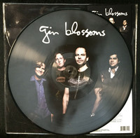 Gin Blossoms - Live In Concert (Vinyl) - Cover