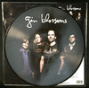 Gin Blossoms - Live In Concert (Vinyl)