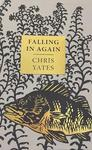 Falling In Again - Christopher Yates (Hardcover)