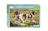 Otter House - Spaniels on the Moor Puzzle (1000 Pieces)