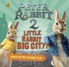Peter Rabbit 2: Little Rabbit Big City (Hardback)