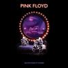 Pink Floyd - Delicate Sound of Thunder (Vinyl)