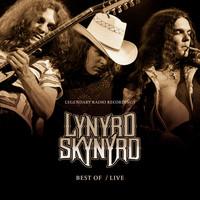Lynyrd Skynyrd - Best Of/ Live (Vinyl)