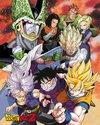 Dragon Ball Z - Cell Saga Mini Poster (40x50cm)