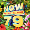 Various Artists - NOW Thats What I Call Music! Vol. 79 (CD)
